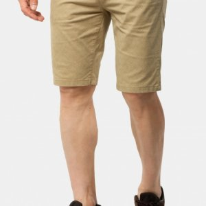 Men's shorts Avecs 30351/8