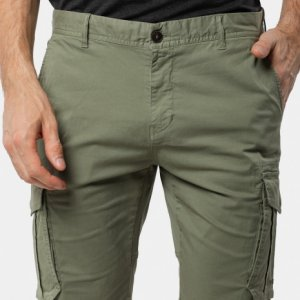 Men's shorts Avecs 30352/15